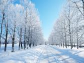 Winterstalling 2016